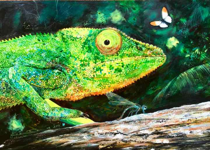 Stephen Thomas painting of a chameleon. Painting dimensions are 70cm x 50cm.