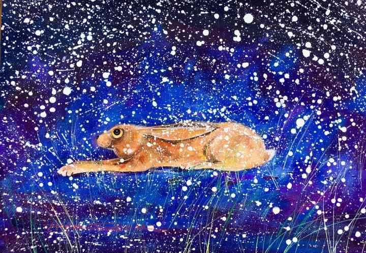 Stephen Thomas painting of a hare, hanging out in the snow. Painting dimensions are 49cm x 34.5cm.