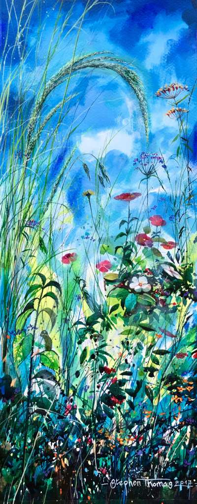 Stephen Thomas painting of colourful wild flowers in a blue sky background. Painting dimensions are 48cm x 19cm.