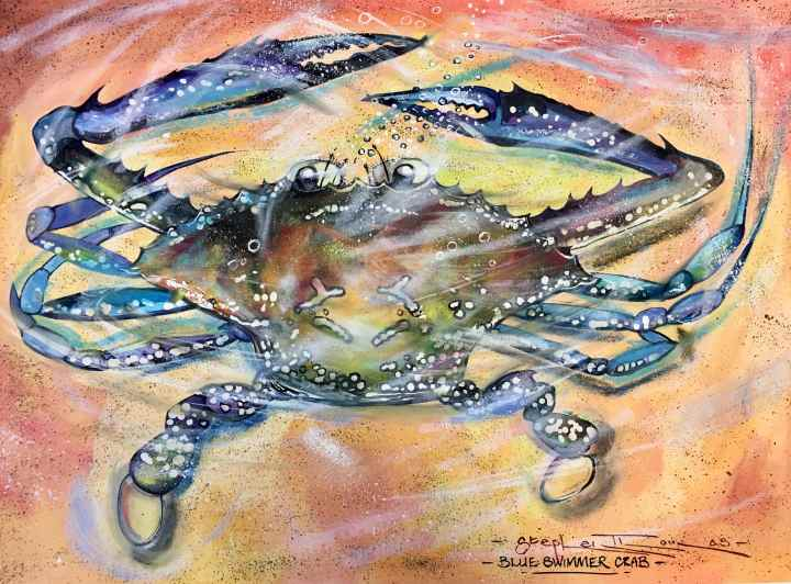 Stephen Thomas Painting of blue swimmer crab. He used watercolour, inks, liquid acrylics and water soluble pastels. Painting dimensions are 37cm x 26.5 cm.